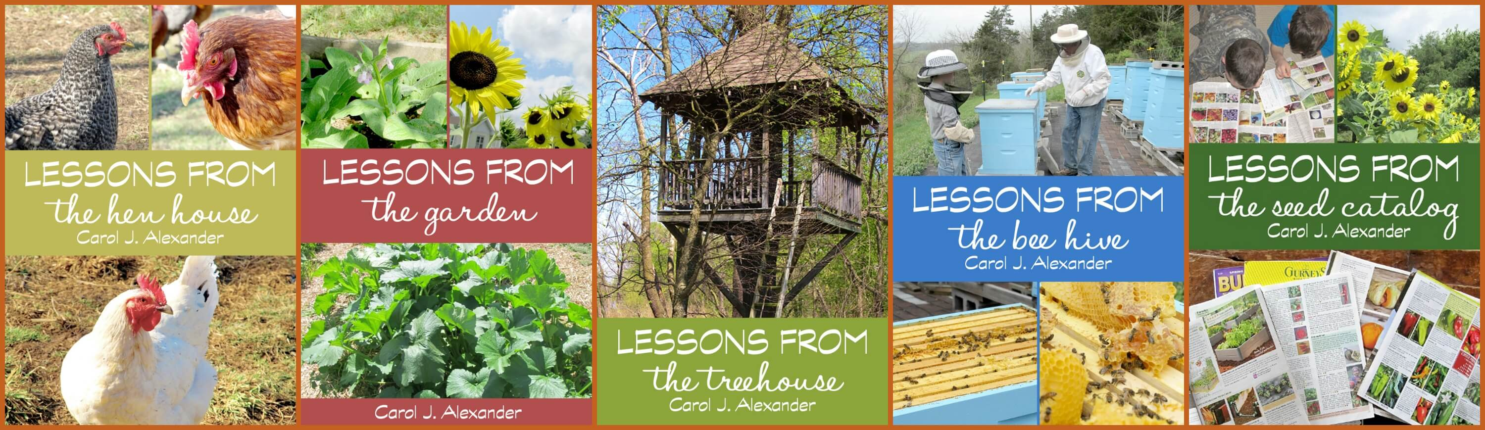 Lessons from the Homestead