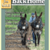 BackHome Magazine