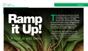 Ramp it Up! A Look at Wild Leeks | Carol J Alexander