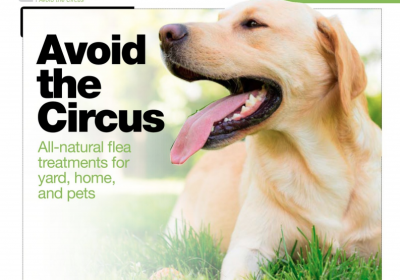 Avoid the Circus: All Natural Flea Treatments–AcreageLife, June 2018