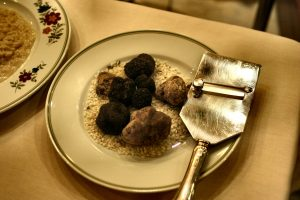 How to Grow Truffles in the US | Carol J Alexander