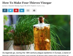 Four Thieves Vinegar | Carol J Alexander