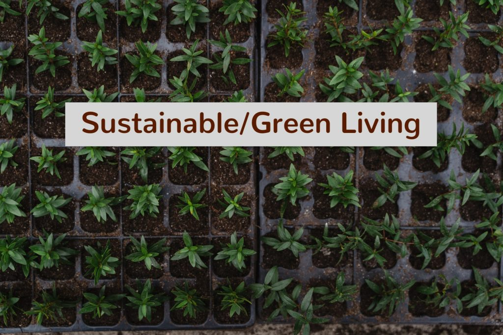 sustainable living writer